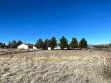 20291 Prickly Pear Drive - Photo 16