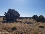 437 Sierra Verde Ranch - Photo 4