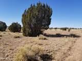 437 Sierra Verde Ranch - Photo 5
