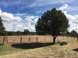 12600 Pheasant Run Road - Photo 20