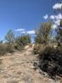 6001 Dillon Wash Parcel 153A Road - Photo 27