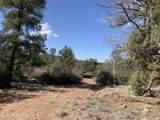 6001 Dillon Wash Parcel 153A Road - Photo 8