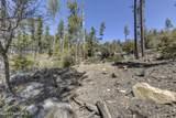 3605 Copper Basin Road - Photo 17