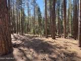 3300 Misty Mountain Loop - Photo 5