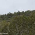 0 Rancheria Road - Photo 3