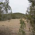 0 Rancheria Road - Photo 5