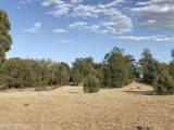 1509 Sierra Verde Ranch - Photo 10