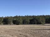 1509 Sierra Verde Ranch - Photo 3