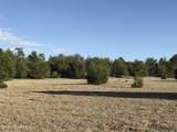1509 Sierra Verde Ranch - Photo 9