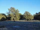 359 Sierra Verde Ranch - Photo 11