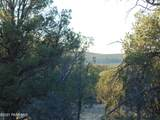 359 Sierra Verde Ranch - Photo 12