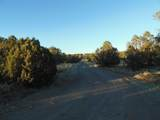 359 Sierra Verde Ranch - Photo 14