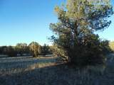 359 Sierra Verde Ranch - Photo 5