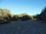 359 Sierra Verde Ranch - Photo 6