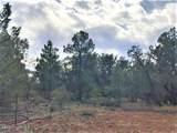 134 Lightning Trail - Photo 3