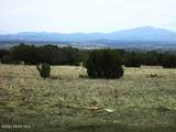 50125 Bunny View Trail - Photo 19