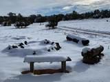 4850 Meadow View Lane - Photo 2