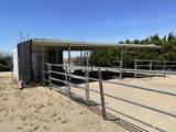 7325 Coyote Springs Road - Photo 7