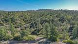 12775 Quartz Creek Trail - Photo 3