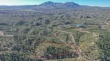 12825 Quartz Creek Trail - Photo 1