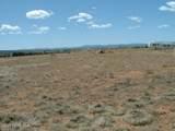 1575 Antelope Run Road - Photo 7