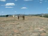 1575 Antelope Run Road - Photo 9