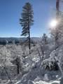 2296 Yellow Pine Trail - Photo 49