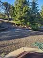2960 Horizon Hills Drive - Photo 4