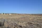 1805 Big Sky Ranch Road - Photo 10