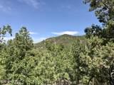 4241 Heavenly Heights Loop - Photo 1