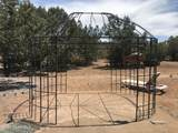 37526 Howling Coyote Road - Photo 41