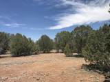 37526 Howling Coyote Road - Photo 56
