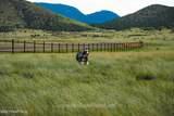 10147 Free Spirit Road - Photo 7