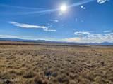 10207 Free Spirit Road - Photo 15
