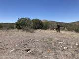 2500 Kessler Ranch Road - Photo 7