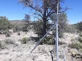 Lot 305 Juniperwood Ranch - Photo 3