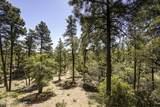 5815 Rustic Trail - Photo 39