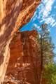 25 Painted Cliffs Drive - Photo 88