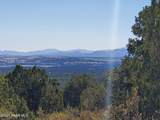 1339 Peaceful View - Photo 23