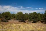 0 Mayer Bolada Road - Photo 11