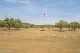 674 Cienega Drive - Photo 57
