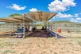 33425 Cowboy Clint Way - Photo 40