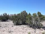 Lot 288 Juniperwood Ranch - Photo 2