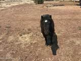 45650 Bixler Trail - Photo 37