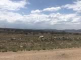 1220 Trev View Trail - Photo 6