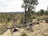 16001 Top View Lane - Photo 7