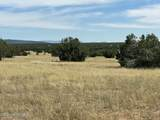 565 Sierra Verde Ranch - Photo 4