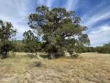 565 Sierra Verde Ranch - Photo 5