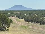 565 Sierra Verde Ranch - Photo 6