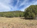 565 Sierra Verde Ranch - Photo 8